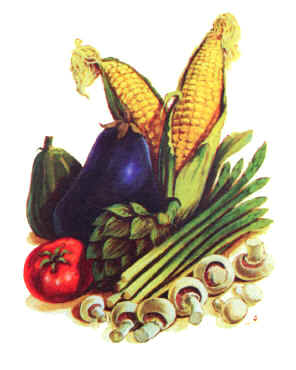 vegetables1.jpg (15061 bytes)
